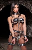 Female Chastity Belt