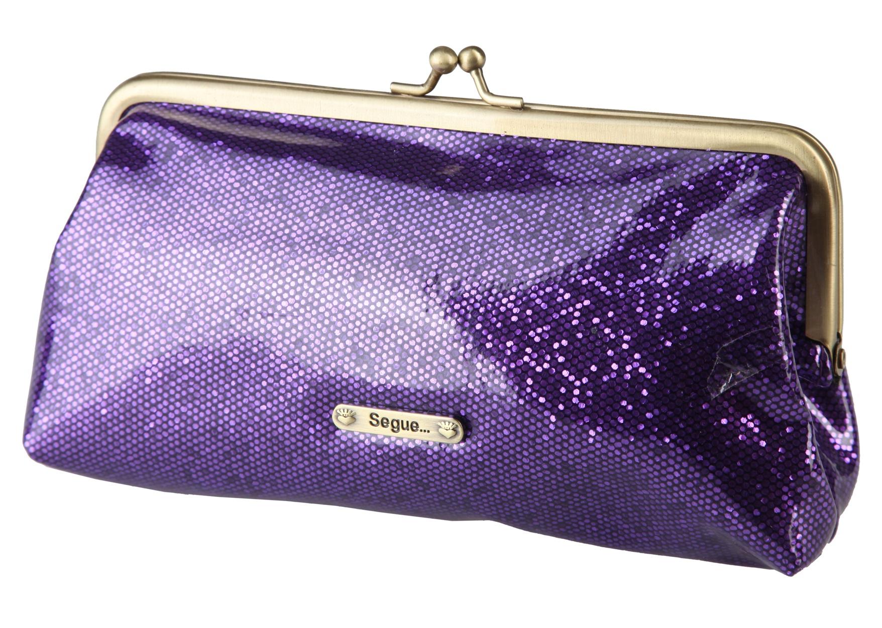 Segue Pochette Violet Rf600141